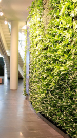 Eco Friendly hotel certification
